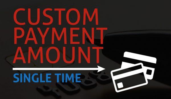 Other Services (Single Payment)